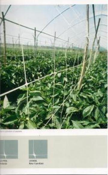 Plase suport pentru plante agatatoare