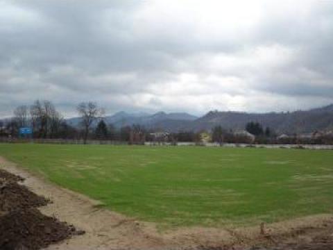 Gazonare terenuri de sport prin insamantare sau role gazon de la Sc Maj-Tom Gazon Srl