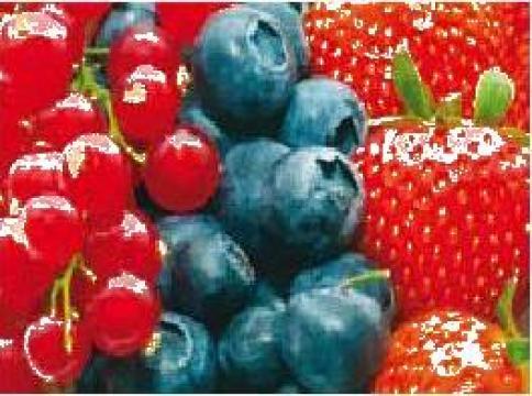 Echipare depozite pentru fructe proaspete