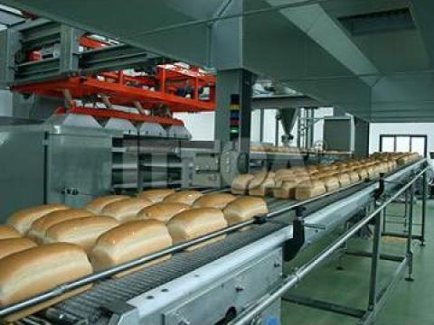 Echipamente linie productie paine de la Utilaje Constructii Intercom Srl