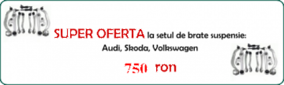 Brate auto Audi, Volkswagen