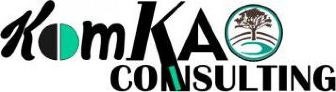 Consultanta pentru accesarea de fonduri nerambursabile de la Komkao Consulting