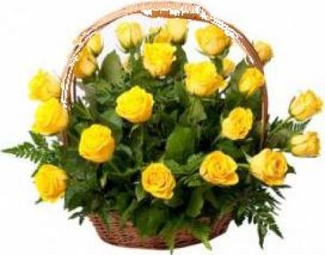 Cos flori 25 trandafiri de la Floraria Rosalia