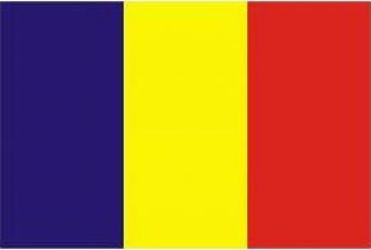 Steag drapel Romania de la Akilex Conf S.r.l.