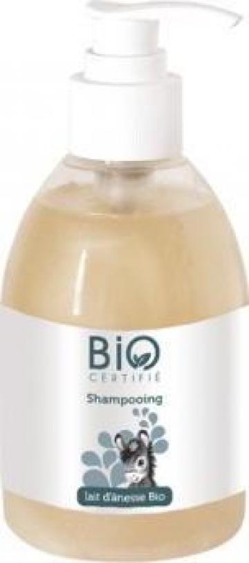 Sampon Bio cu lapte de magarita - Laboratoire Gravier de la Krysos