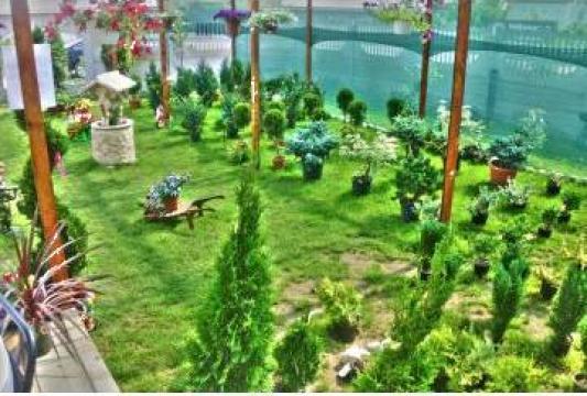 Amenajare gradini de la Cristian Garden