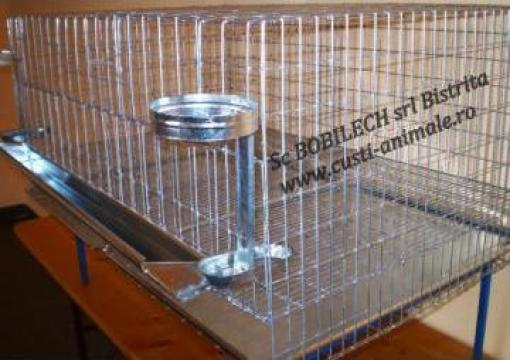 Cusca 20 gaini ouatoare 1 nivel / 200 cm