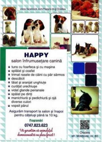 Servicii salon canin Happy Oradea
