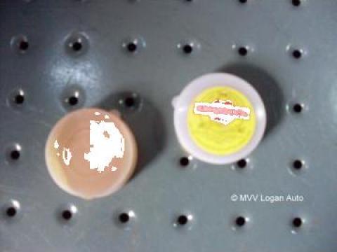 Pasta decapanta de la Mvv Logan Auto Srl