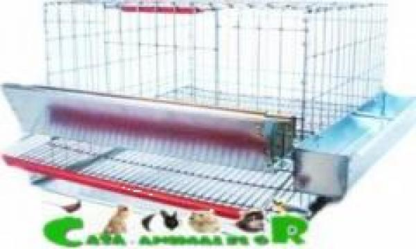 Cusca pentru 25 de prepelite ouatoare de la Www.casa-animalelor.ro