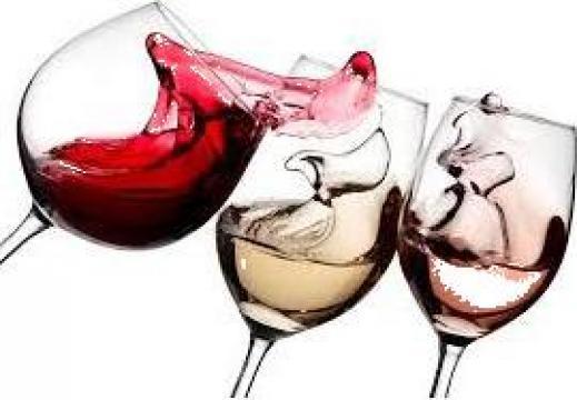 Vin alb si rosu de la Sc Cramele Minis Sa