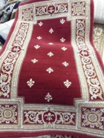 Carpeta Cisnadie 21