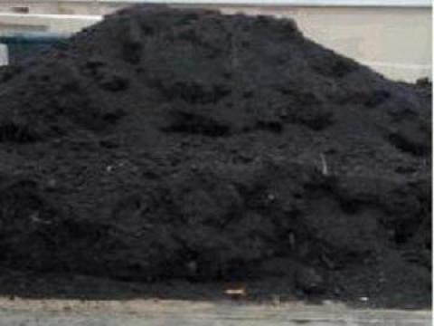 Pamant negru de padure vegetal pentru gradina de la Trans Udroiu Srl