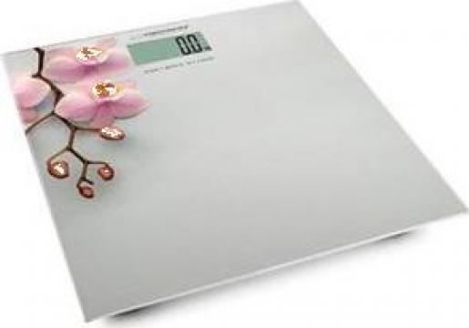 Cantar baie Orchid Esperanza 180kg gri de la Electro Supermax Srl