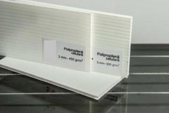 Polipropilena celulara alba 3mm de la Geo & Vlad Com Srl