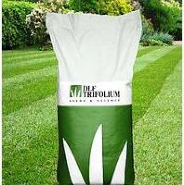 Gazon Luxgrass Sport DLF Trifolium de la Perfect Style