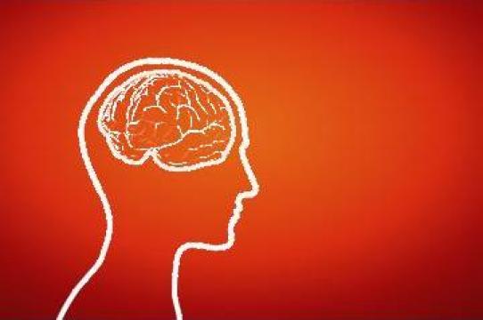 Aviz psihologic permis de vanatoare de la Cabinet Individual De Psihologie Davidescu Mihaela