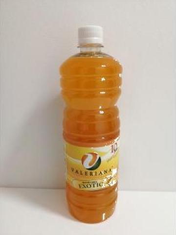 Sirop pentru granita 1 litru exotic de la Cristian Food Industry Srl.