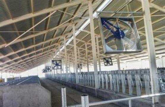 Ventilatoare grajd de la APF Trade Srl