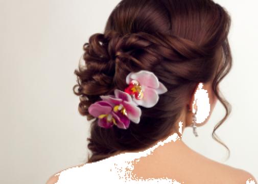 Curs coafor (Hair style) de la Profesional New Consult