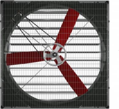 Ventilator de capacitate avicultura