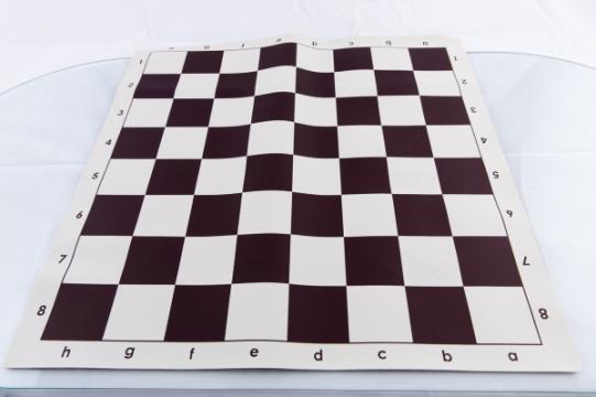 Set piese de sah Combo din plastic no. 6 - light si tabla de la Chess Events Srl
