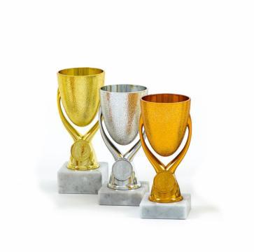 Cupa MS09 de la Chess Events Srl