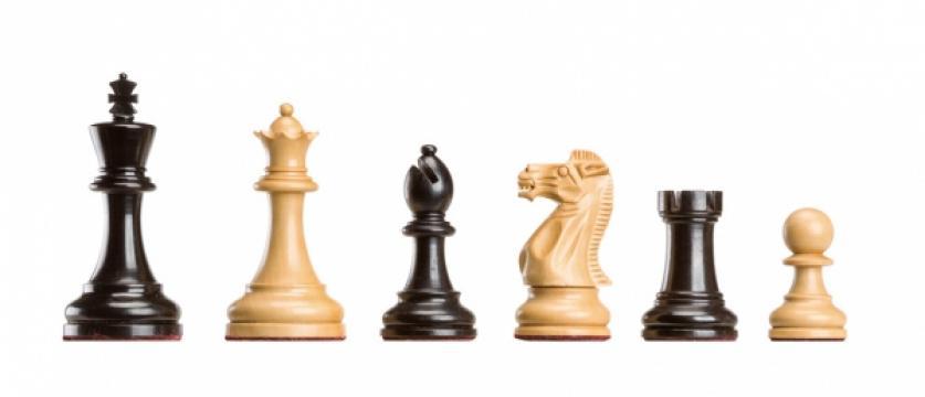 Piese de sah - Polgar Deluxe de la Chess Events Srl