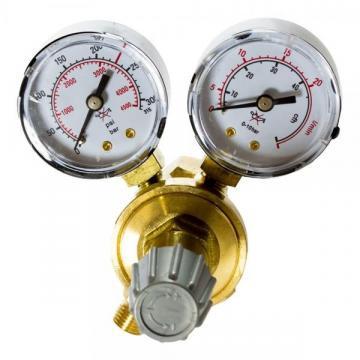 Reductor presiune AR/CO2 2 manometre de la It Republic Srl