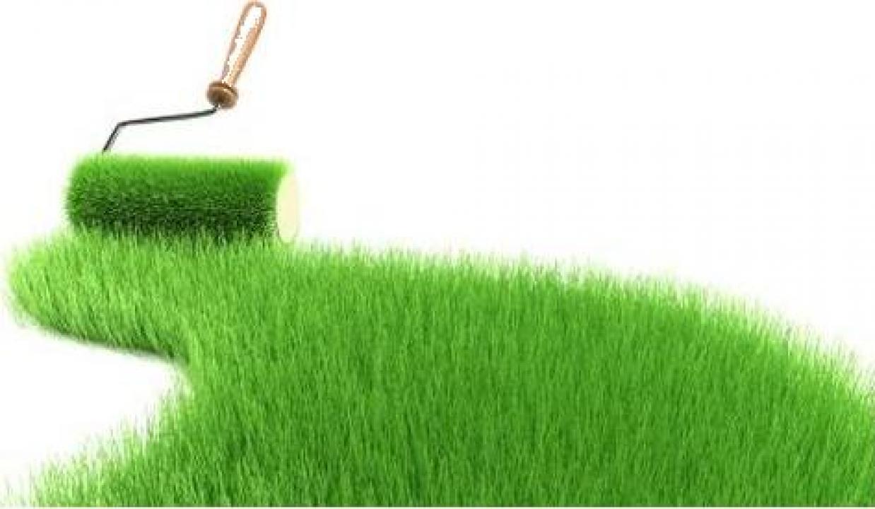 Fertilizare pamant pentru gazon