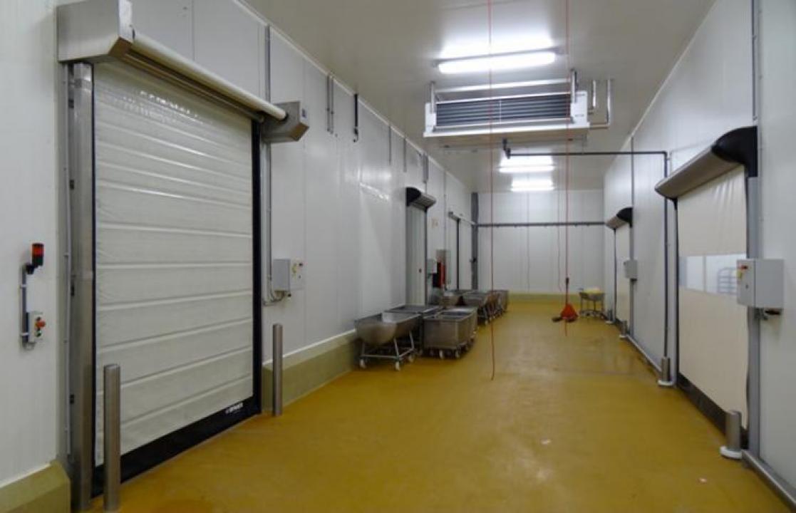 Congelatoare / frigidere industriale