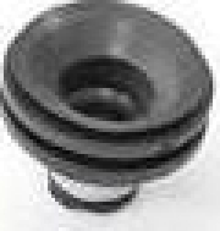 Tampon capac motor Renault Clio II, Laguna II, Megane II